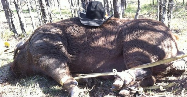 "Somehow, someway these hunters managed to tie up a 790-pound hog named ""BoarZilla"""