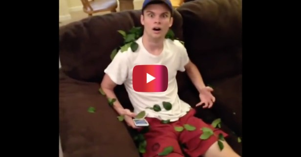 These Disney and Pokemon pranks on Vine are taking over the Internet