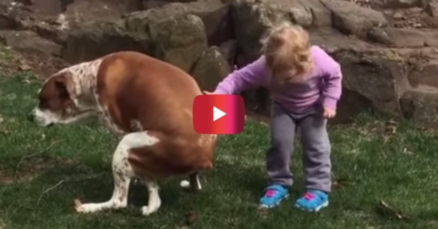Instead of being grossed out like some of us, this little girl encourages her dog when he needs it most