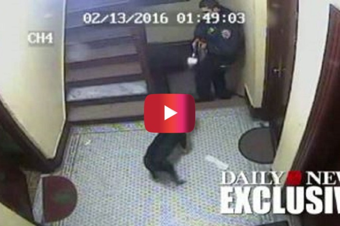 Watch the awful moment a cop opened fire at a woman's dog for absolutely no reason