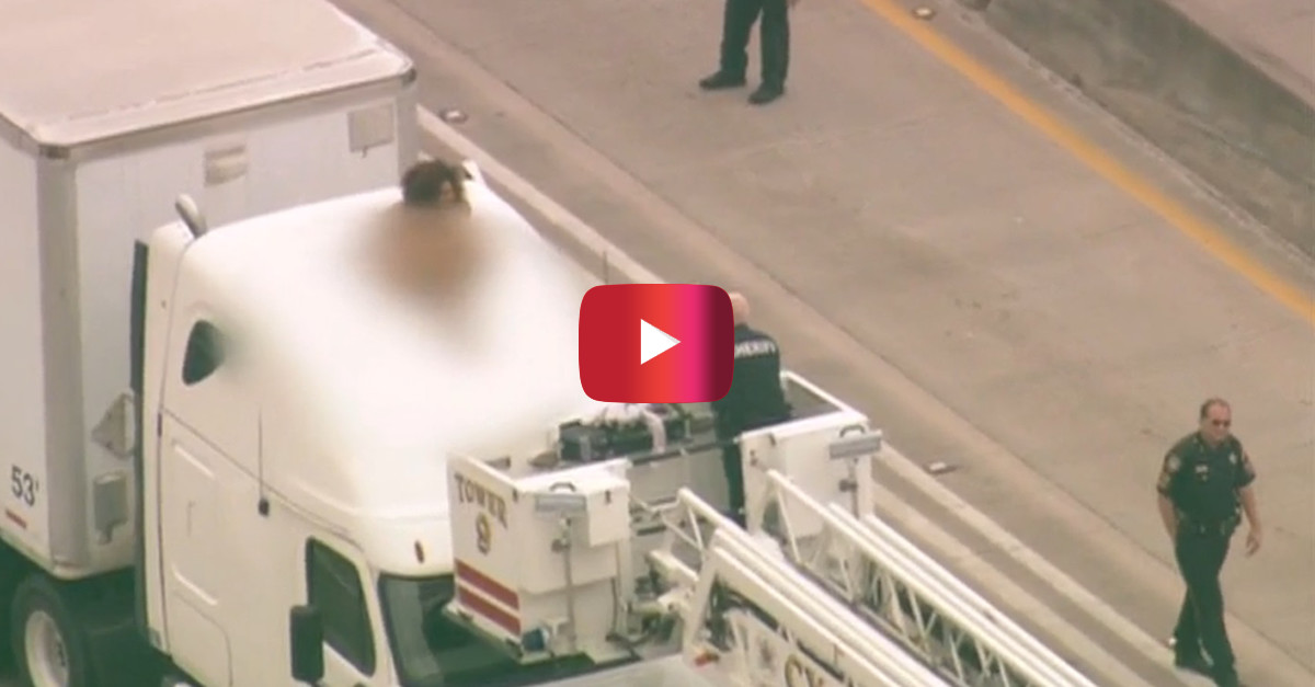 A naked woman stopped traffic to dance on a big rig, and here's what everyone is blaming