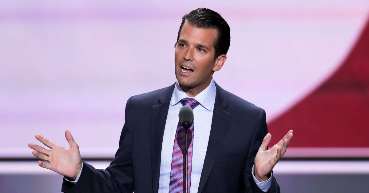 Donald Trump Jr.'s meeting with that Russian attorney was foolish but not illegal