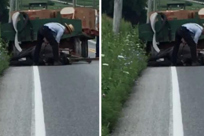 A woman captured this man beating a horse to death, and he is now facing the consequences