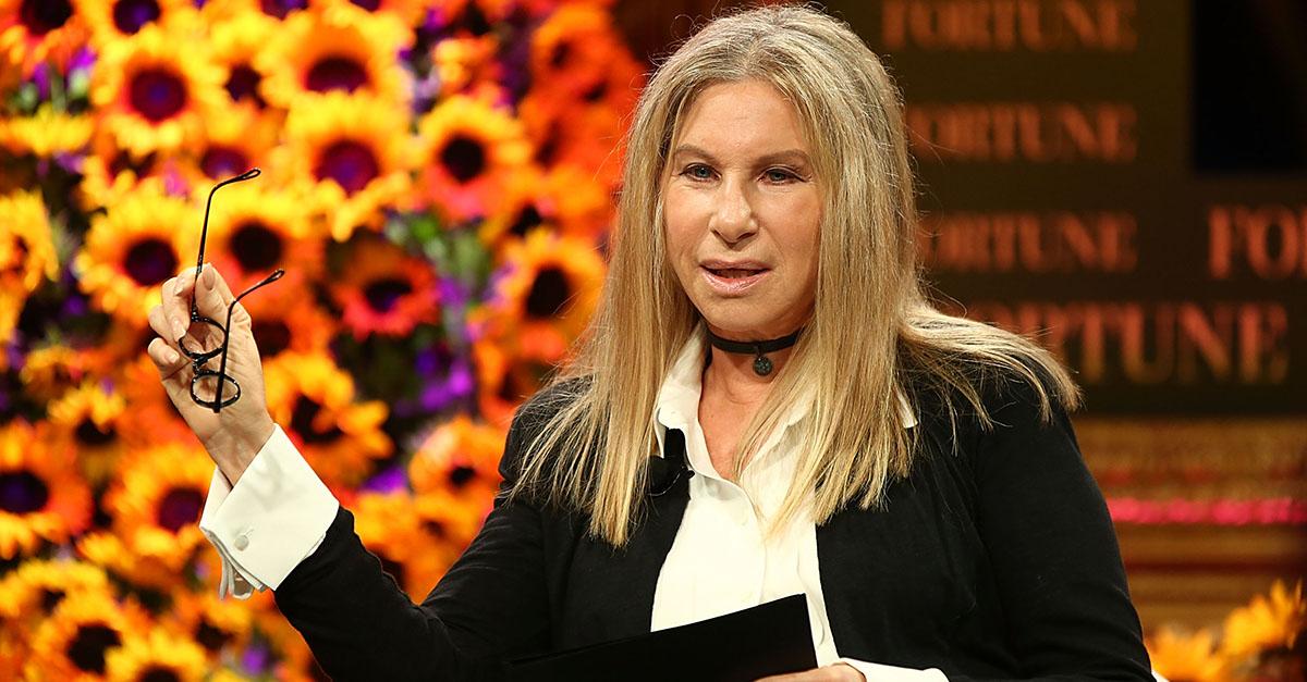 "Remember When Barbra Streisand Called Donald Trump ""Clueless, Reckless, Graceless, Mindless and Heartless""?"