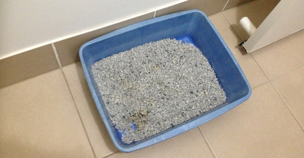 It's not just for de-icing: Here are 10 unexpected things you can do with kitty litter
