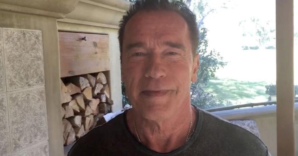Arnold Schwarzenegger denies rumors that he's getting back into politics