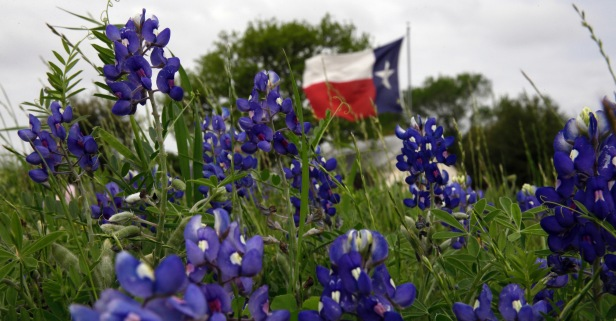 Texas is a state of mind – for some more than others