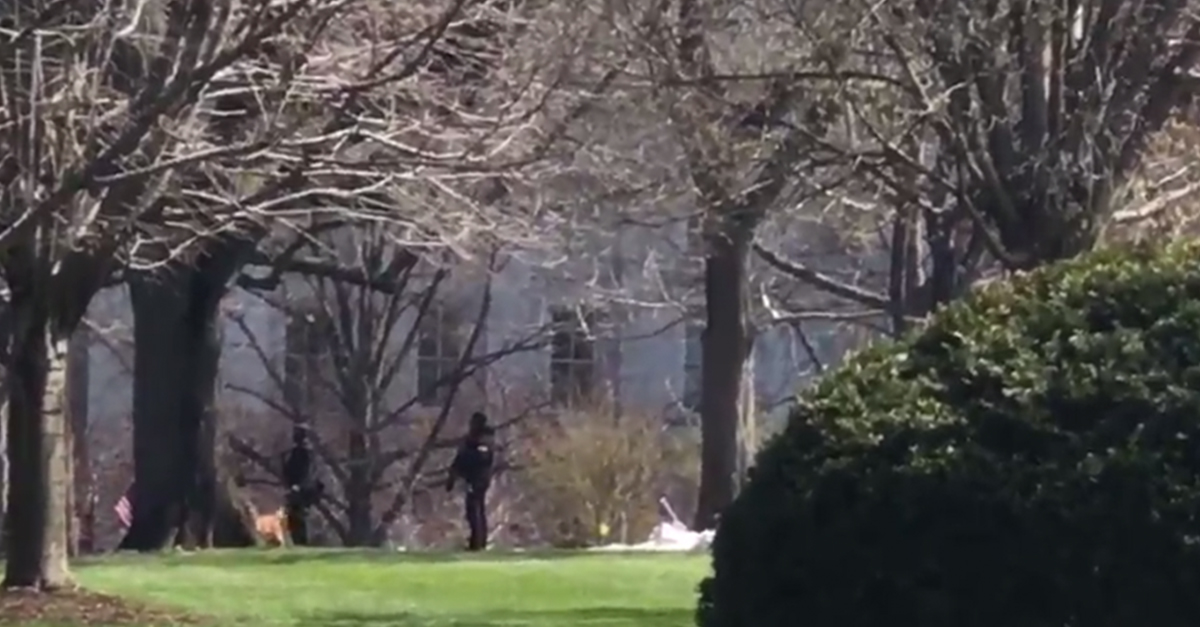 Another scary moment at the White House as Secret Service with rifles clear the area