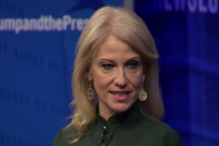 "A journalist asked Kellyanne Conway how she felt about being ""the darkness,"" and even the audience had to laugh"