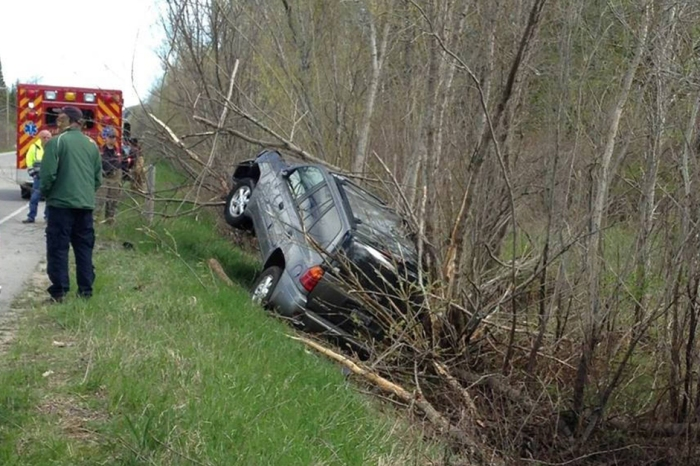 Driver veers into tree-lined ditch because of the creature dangling from his visor