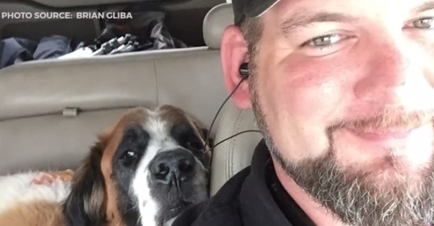 """He was my soulmate:"" Wounded veteran shares the story of his special bond with his St. Bernard service dog"