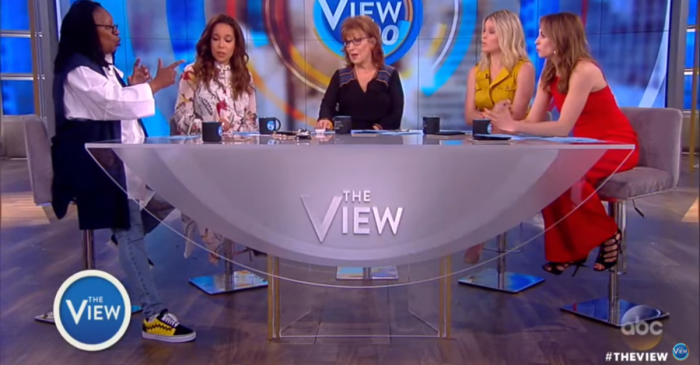 "The claws came out when two ladies of ""The View"" vehemently disagreed about gun control"
