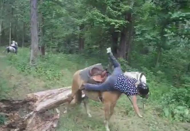 A fallen tree leads to a girl falling off a horse in an epic wipe out