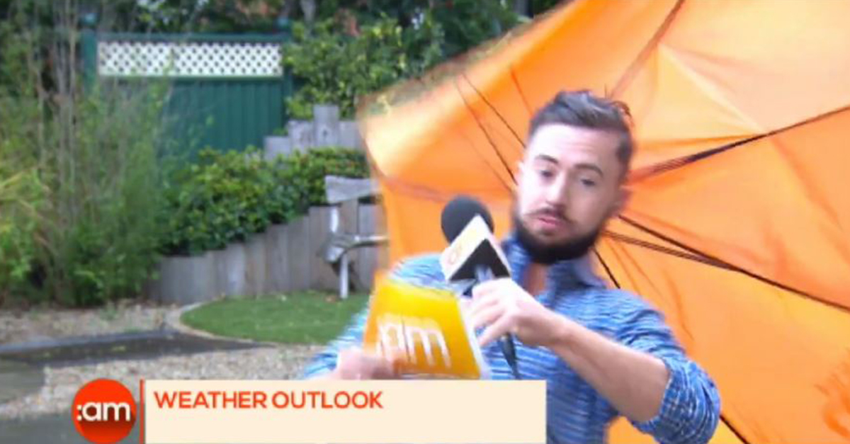 It's Weatherman vs. Wind in this hilarious fail of a news blooper