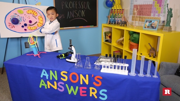 5-year-old genius explains the microscopic organisms that keep us alive