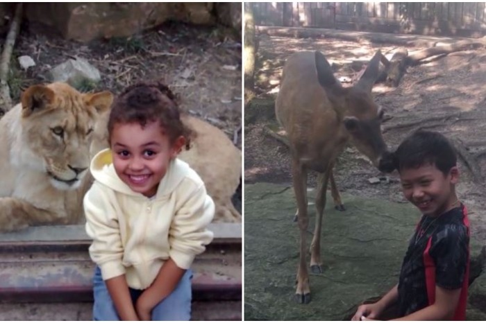 Watch this compilation of kids having hilarious interactions with their favorite animals at the zoo