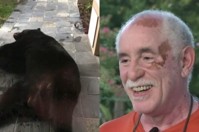 A Florida family found a giant black bear asleep on their front porch