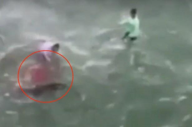 Man Filmed Grabbing Shark, Then Being Bitten by Shark