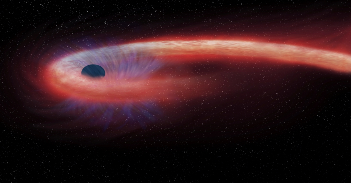 So this is what would happen if you fell into a black hole…