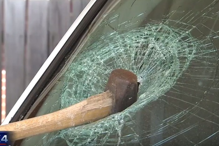 Texas man goes HAM on cop cars with an axe