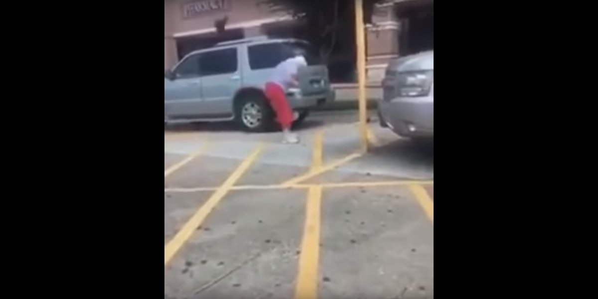 Watch as birds attack customers in a Houston area parking lot