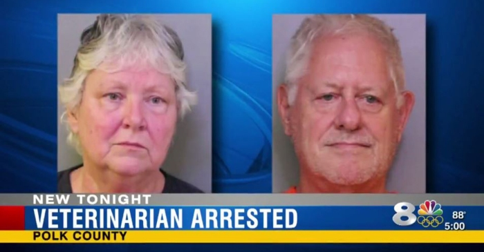 A veterinarian in Florida was arrested after 40 animals were found neglected in her home