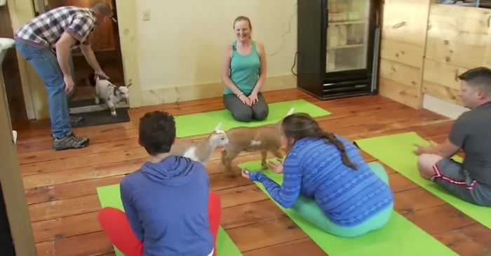 The latest yoga trend involves yoga with kids, the four-legged kind.