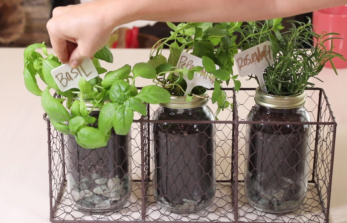 She brings the outdoors inside with the cutest Mason jar herb garden we've ever seen