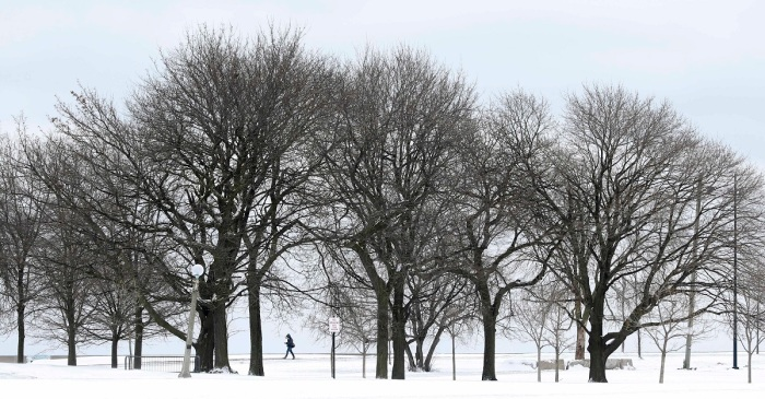 Another tropical winter could be in store for Chicago