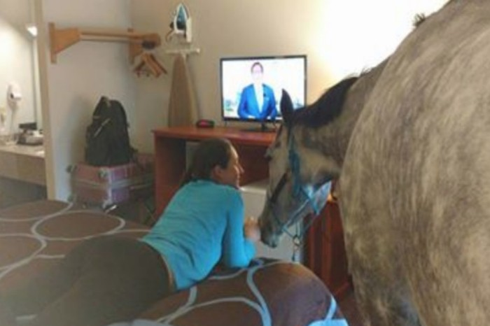 This woman tested the limits of a motel's pet-friendly policy with her horse