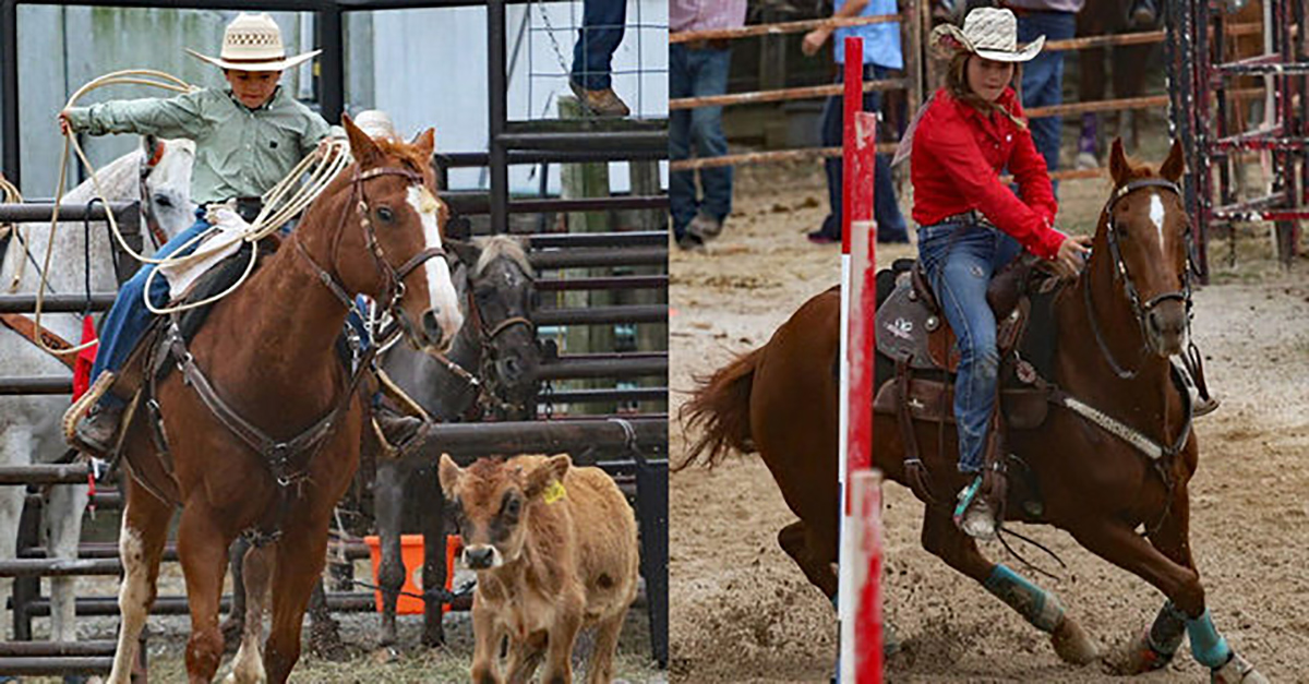 A rodeo family says that their children's prize rodeo horses were stolen in the dead of night
