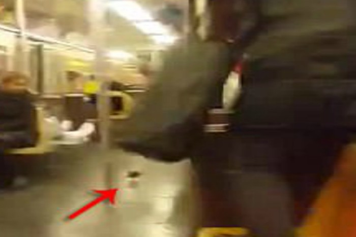 A rat hitched a ride on a New York subway, and straphangers were not impressed