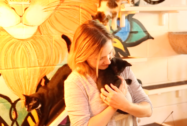 Playing with 20 cats while sipping on a latte — yes, this is a real place