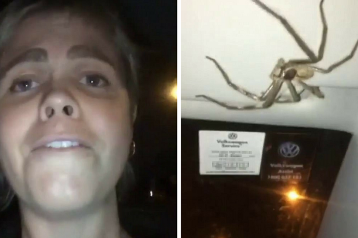Driver Glances Up at Her Visor, Finds Horrifying Monster Staring Right Back at Her