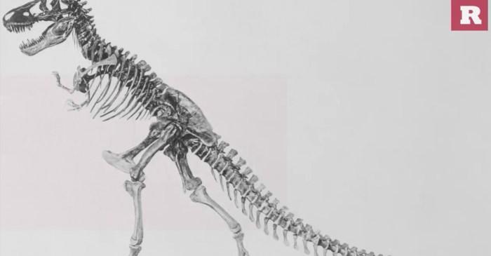 15 fun and ferocious facts on the Tyrannosaurus rex