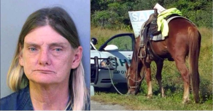 A Florida woman got a DUI while riding her horse, but the horse is about to get the consequences