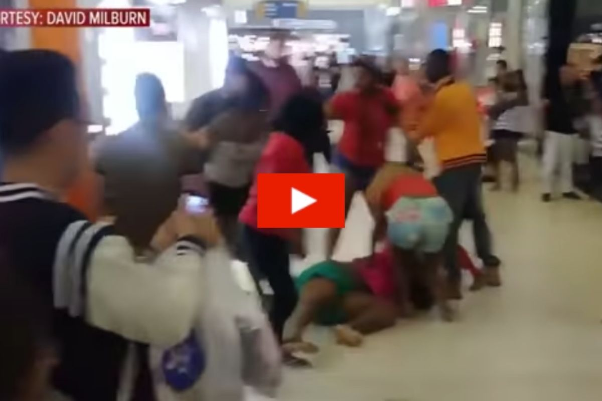 Deck the Halls with Bouts of Folly!: Christmas Shopping Exploded into Mall Brawl