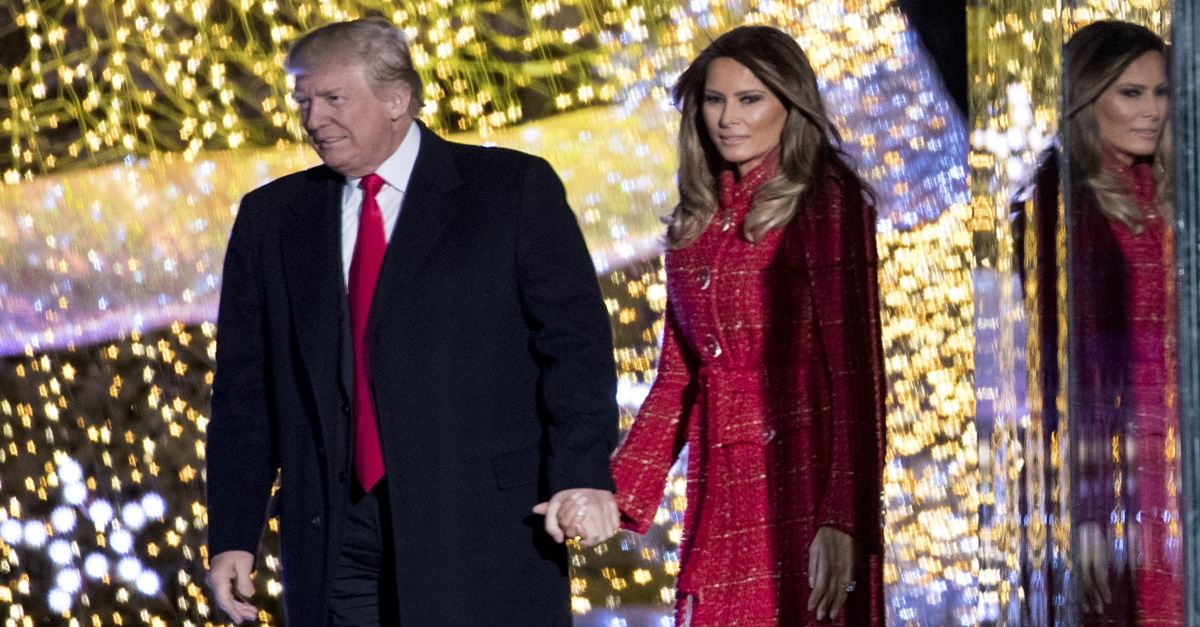 President and Mrs. Trump look breathtakingly elegant in the official White House Christmas portrait