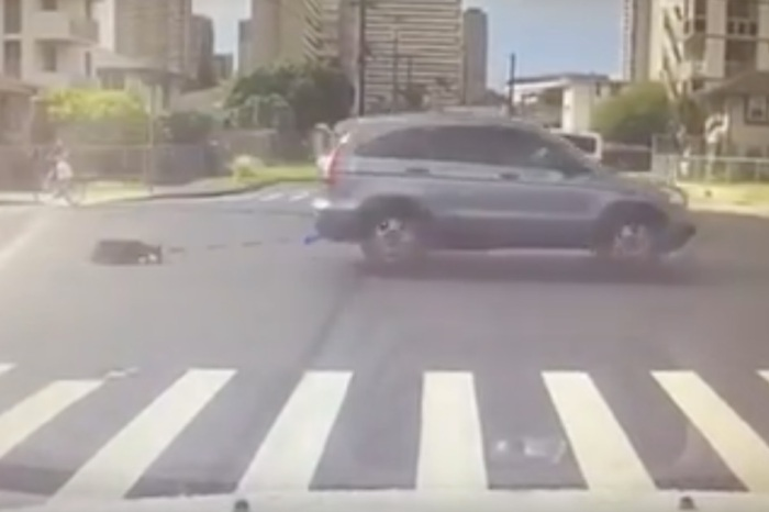 Appalling video of a woman in Hawaii dragging a dog behind her car will make your blood boil