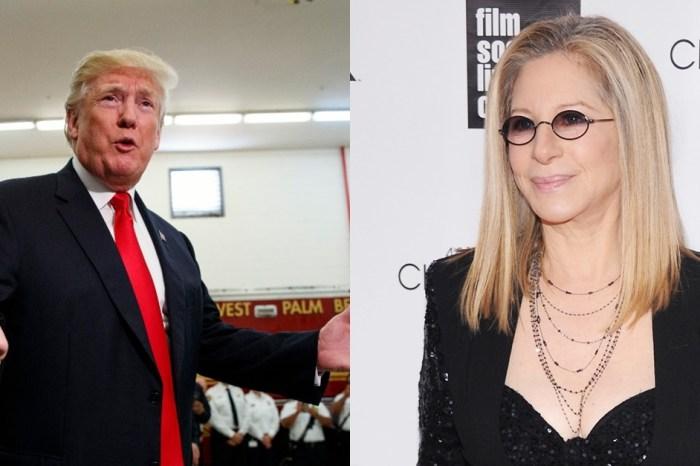 Barbra Streisand blamed Donald Trump for the Florida school shooting
