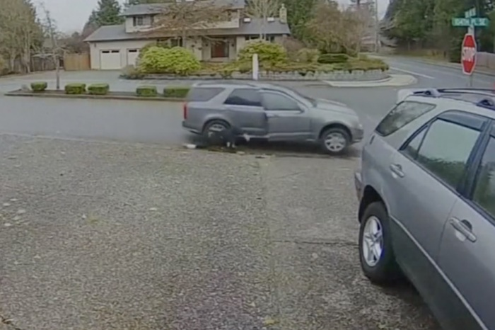A package thief got an asphalt-flavored taste of instant karma, and it was all caught on camera