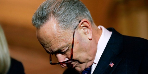 The Democrats were the sole and unequivocal losers of the shutdown