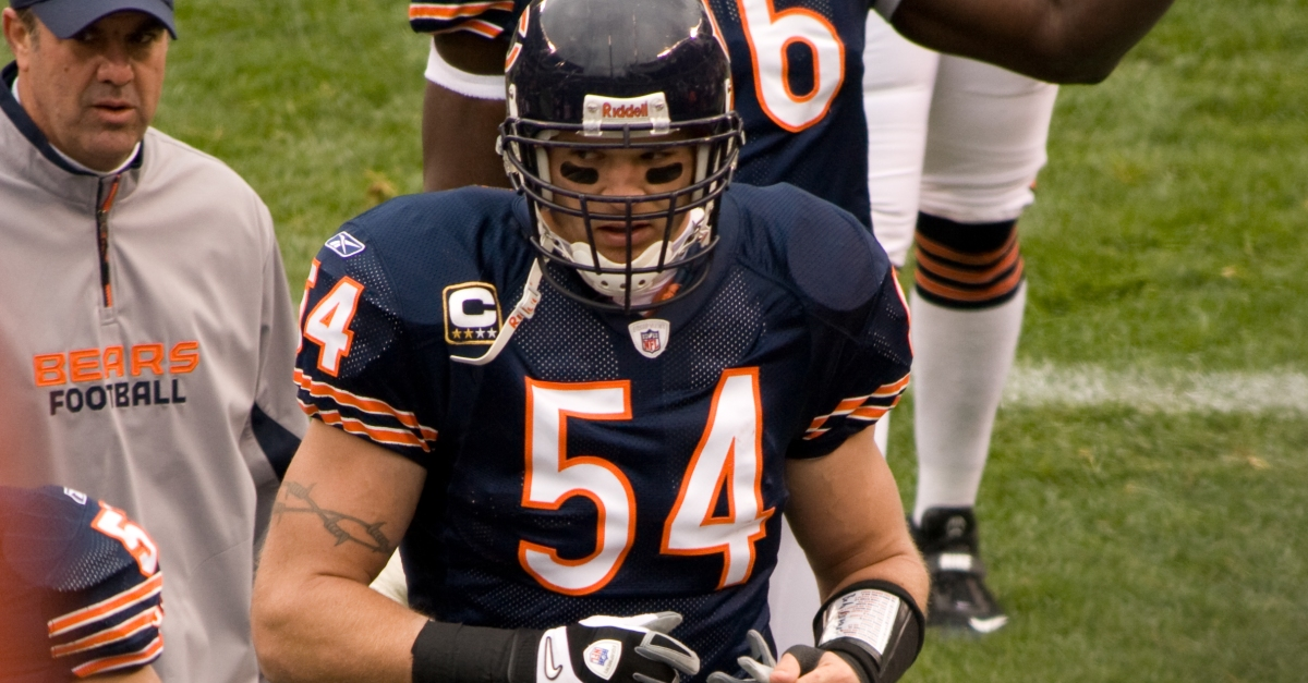 Brian Urlacher made the finals for the 2018 Hall of Fame inductees