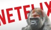gorilla channel netflix