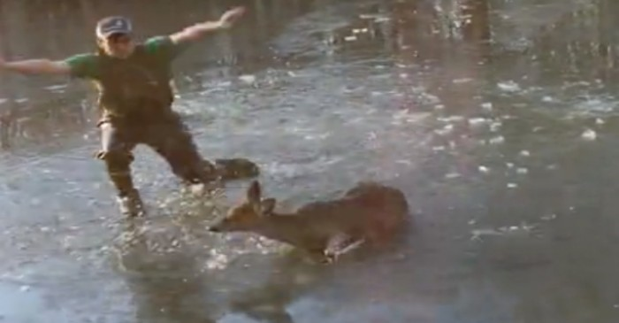 Young Man Amazingly Saves a Baby Deer Stuck in a Frozen Pond