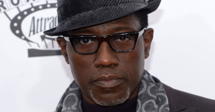 "Wesley Snipes says he tried to make a ""Black Panther"" movie in the 90s — but there was a big issue"