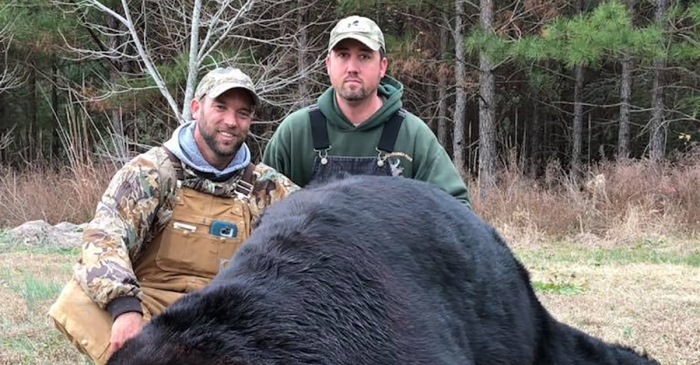 "A bear with the head the size of a ""Yeti cooler"" stuns hunter in North Carolina"