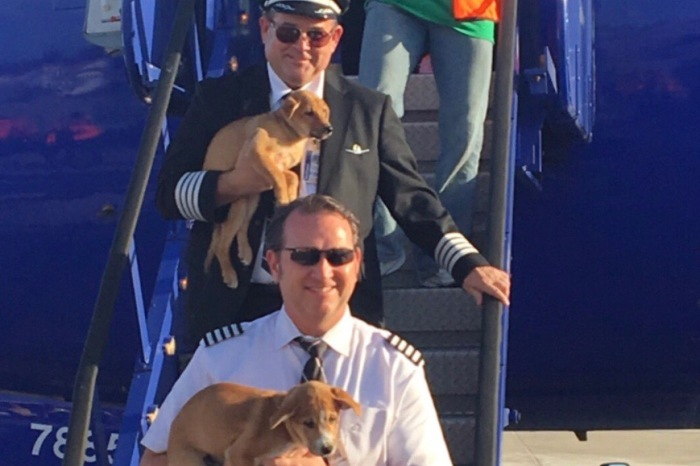 """Volunteering his time to help in Puerto Rico, a Houston-based Southwest pilot's heart is special """"fur"""" real"""