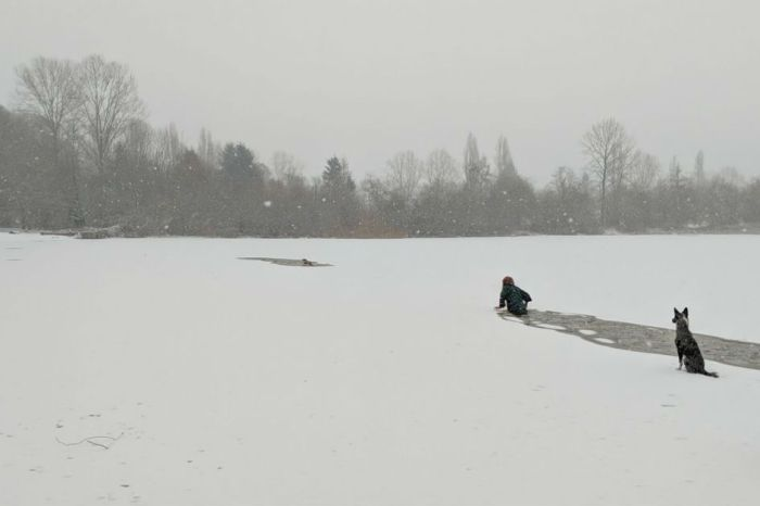 Video shows woman jumping into frozen lake to save dog that fell through ice