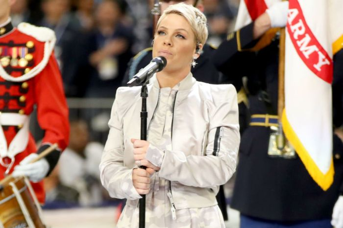 Pink shut down a hater who didn't like her national anthem performance at the Super Bowl